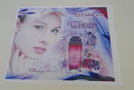 標誌布料橫幅由1.6米(5英尺)eco溶劑打印機WER-ES160打印4