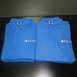 Polo衫由A3 T卹打印機WER-E2000T定製印刷樣品